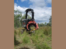Tree Clearing Mulching Equipment Hire Polley S Earthmoving